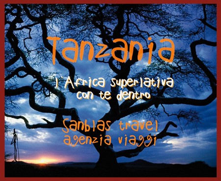 Kilimanjaro Serengeti Tarangire offerte per l'Africa più bella